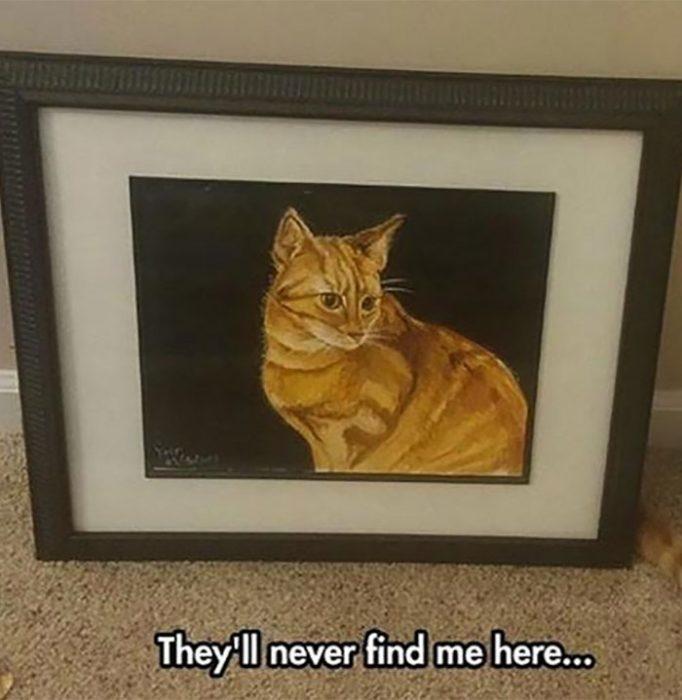 gato tras de pintura