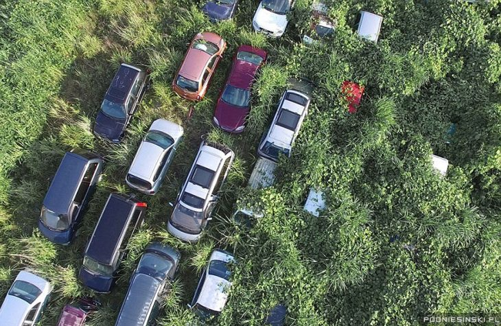 fukushima carros