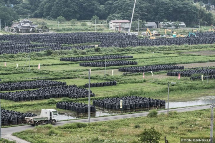 bolsas fukushima