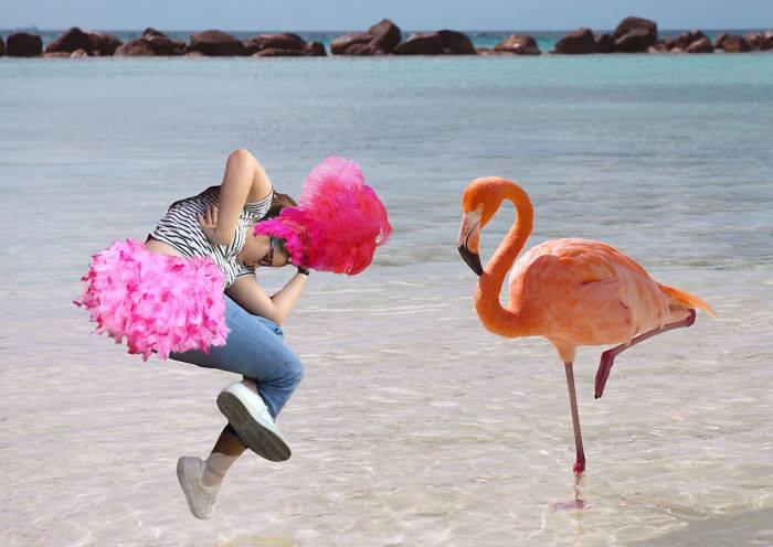 memes chica dormida flamingo