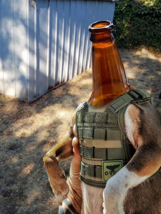cerveza perro