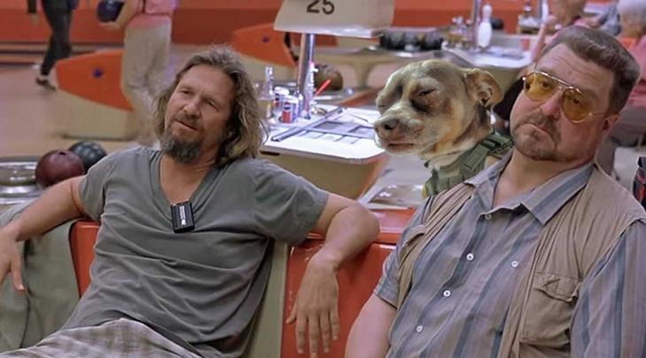perro buscemi
