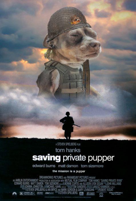 soldado perro