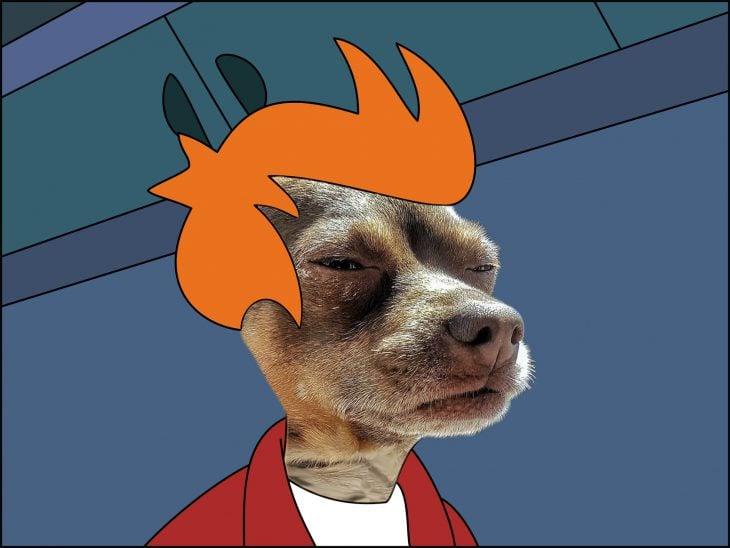 mmm perro