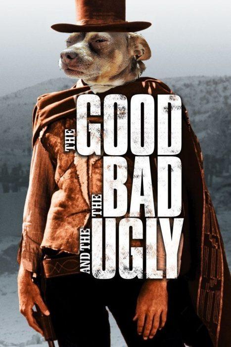 perro malo feo
