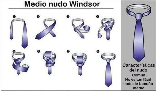 Nudos de corbata windsor