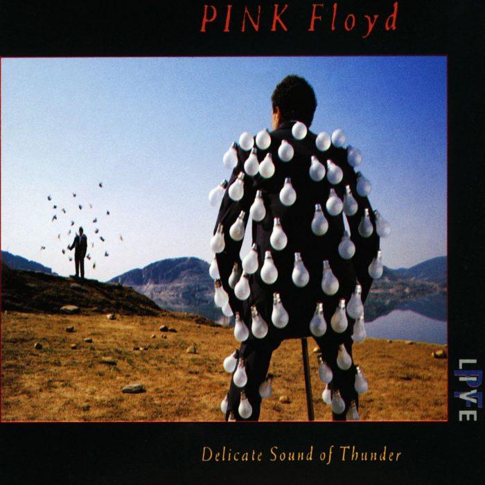 Portada de DElicate Sound of Thunder de Pink Floyd