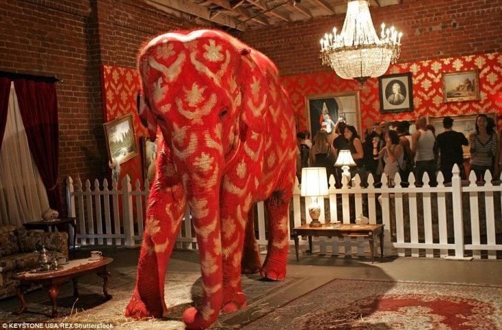 bansky elefante