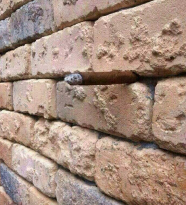 muro imagen ilusion optica