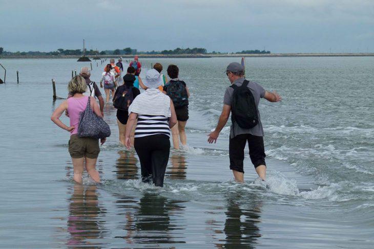 gente camina en el mar