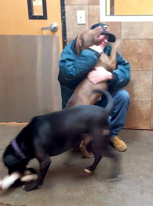 veterano se reúne con sus perros