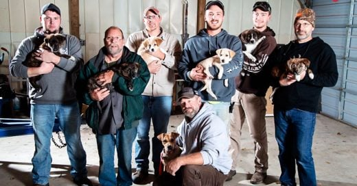 cover-adoptaron-a-7-perritos-abandonados