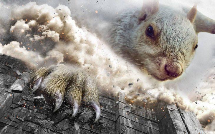 Ardilla en Batalla de Photoshop
