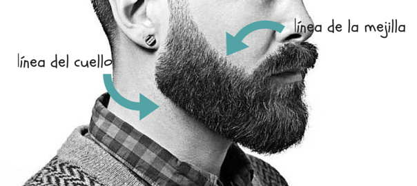 Gráfica de corte de la barba