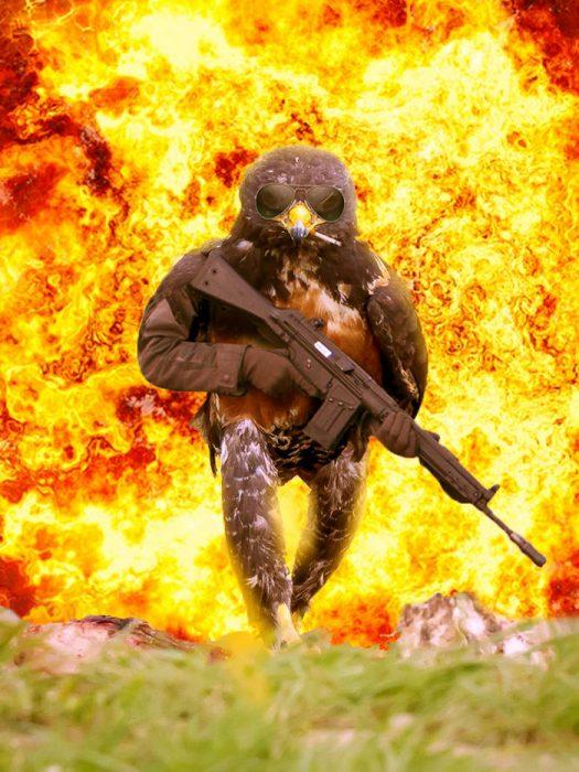 halcon explosion