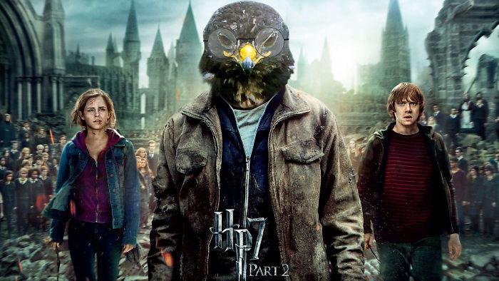 potter halcon