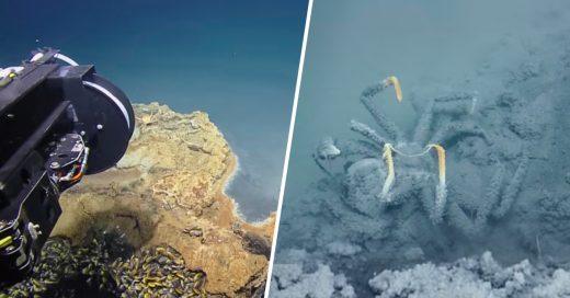 cover-encuentran-un-lago-mortal-dentro-del-golfo-de-mexico