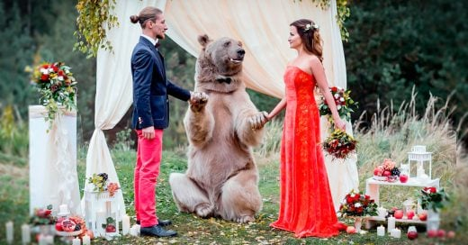 cover-un-oso-caso-a-esta-pareja-rusa