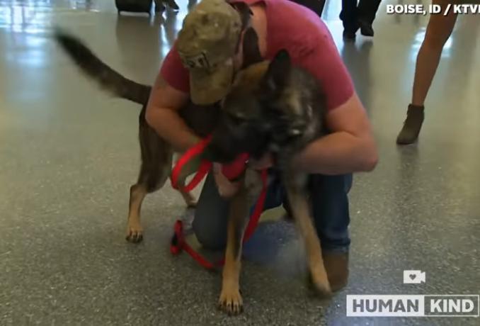 perro y militar