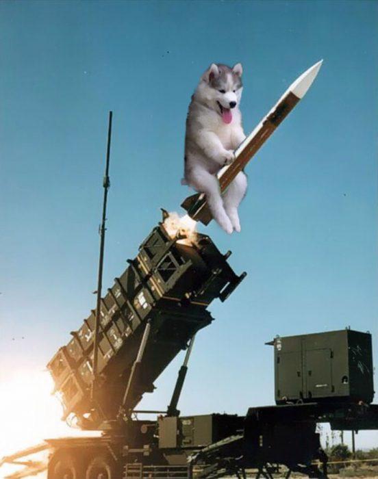 husky PS misil