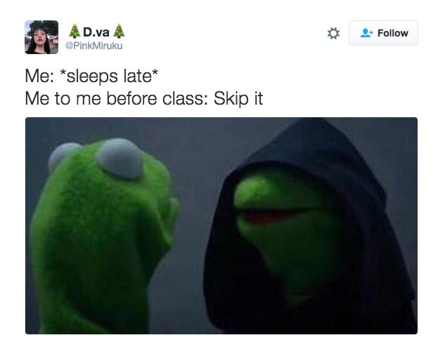 kermit meme dormir