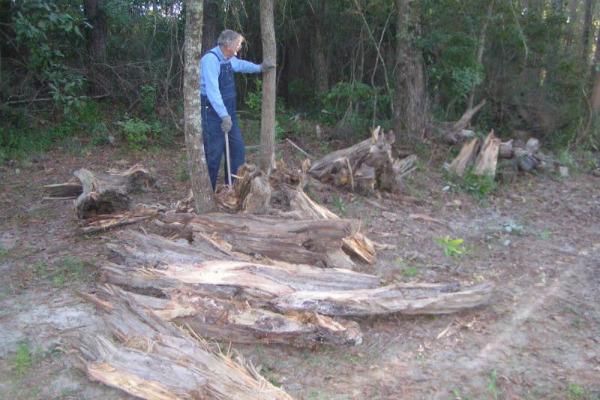 Anciano corta madera
