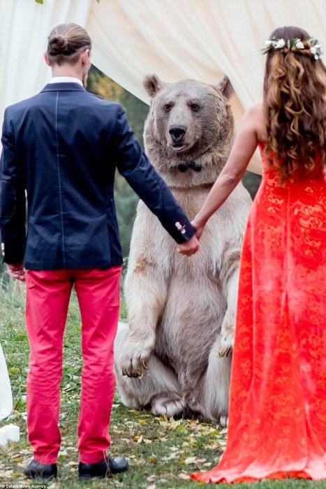 oso y pareja
