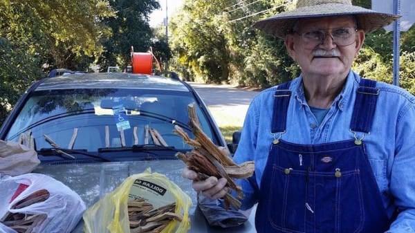 Anciano vende madera