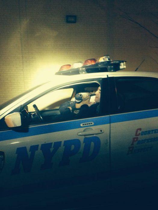 policia caballo