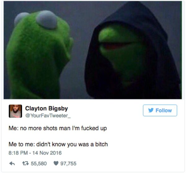 vkermit meme shots