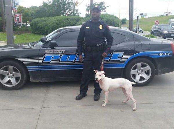 policia perros