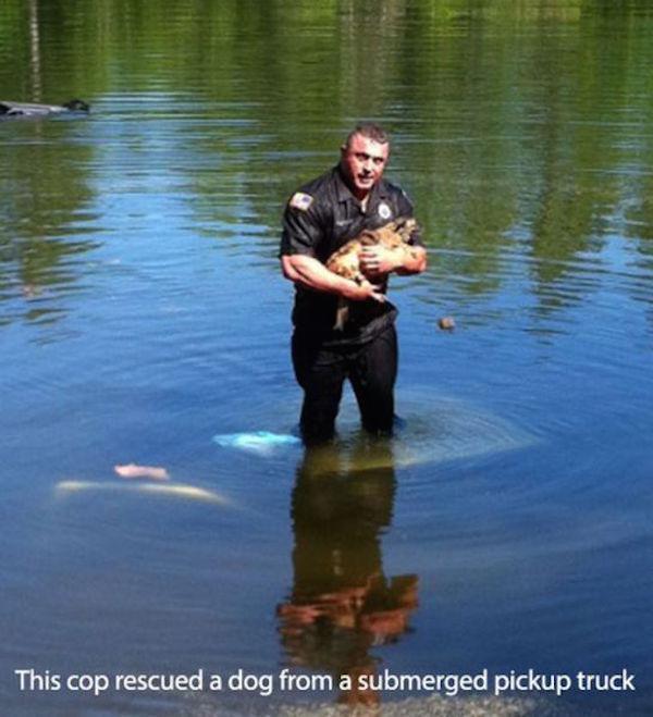 policia rescata perro