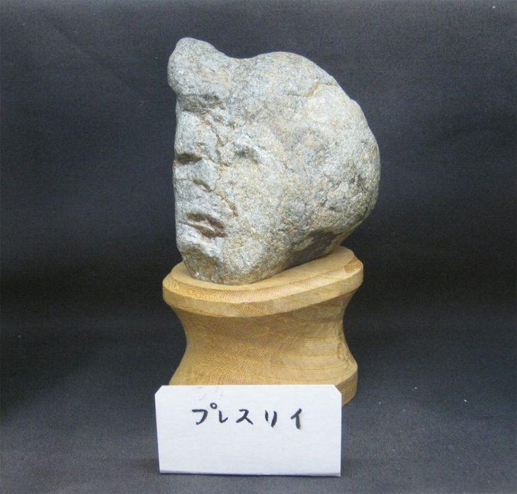 elvis piedra