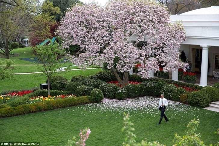obama en jardin