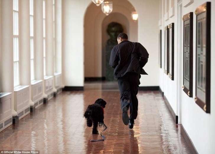 obama y perro