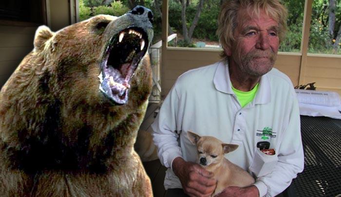 Hits a bear