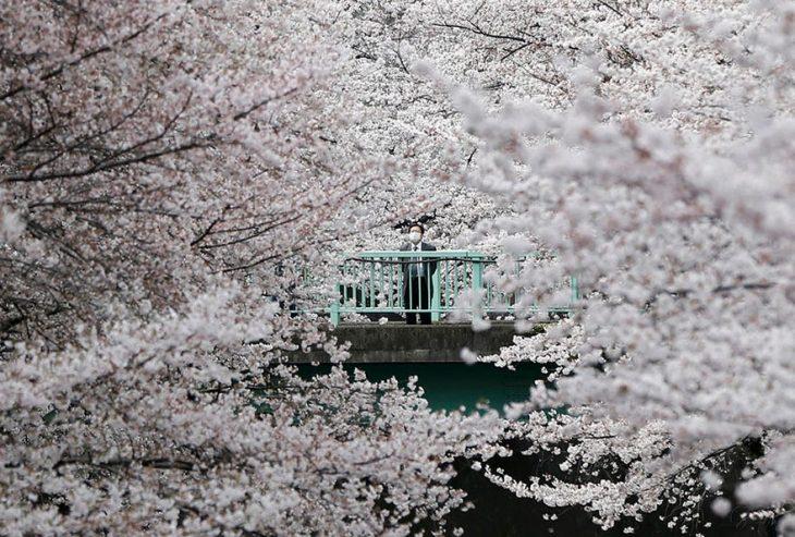 Reuters japon