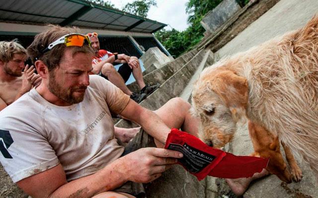 Deportista con perro callejero