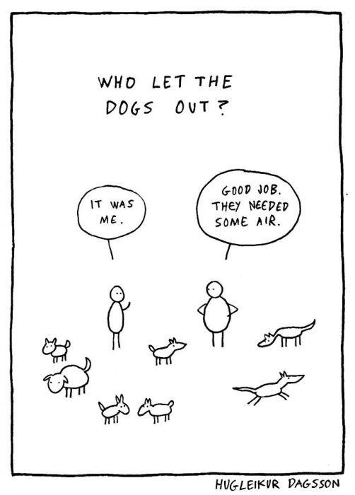 perros carton