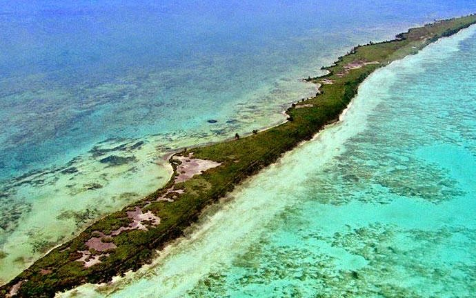dicaprio isla