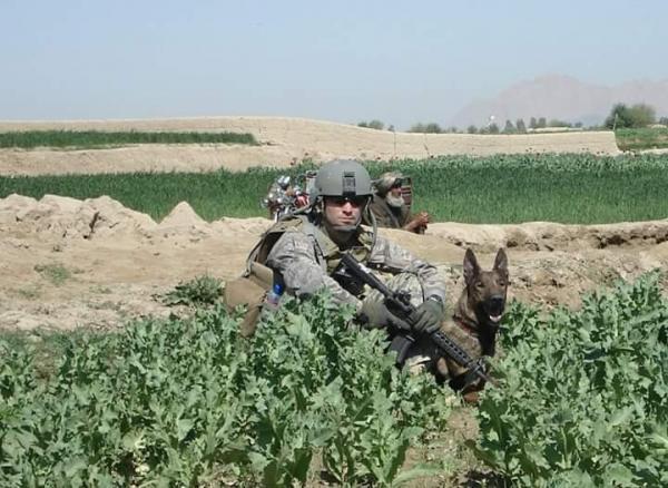 Perro militar en accion