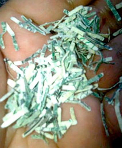 Dólares rotos en la mano