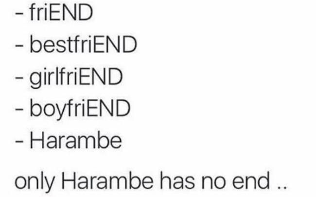 Memes sobre Harambe
