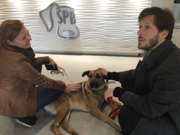 aeroomoza adopta perro