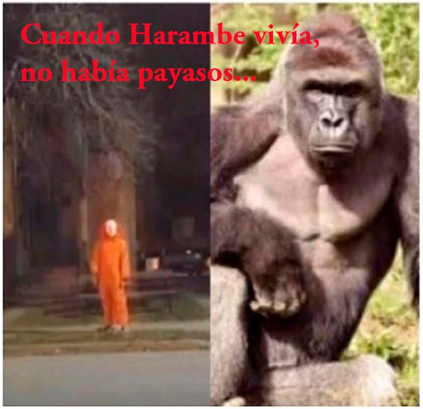 Memes sobre iglesia de Harambe