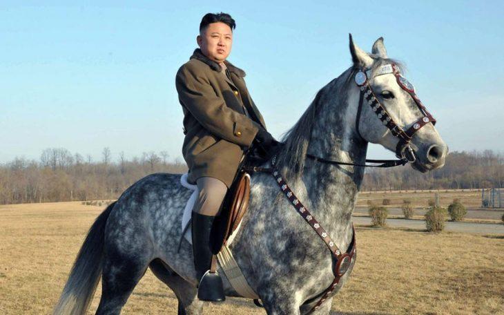 caballo kim jung