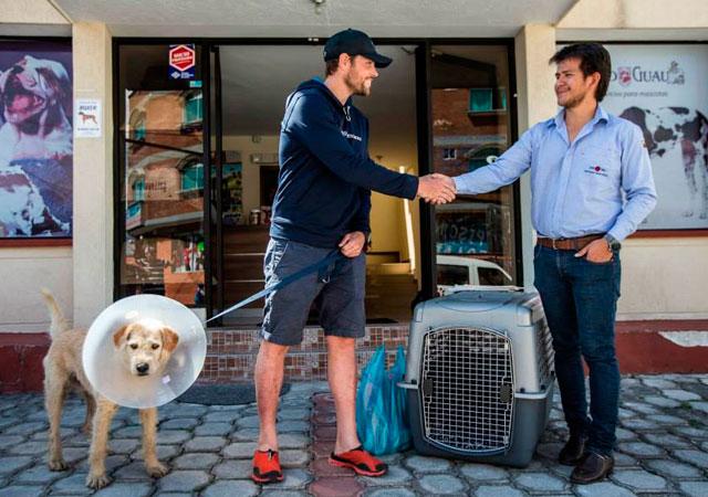 Perro callejero con equipo de deportistas