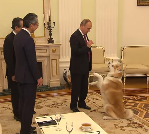 Putin y su perra Yuma
