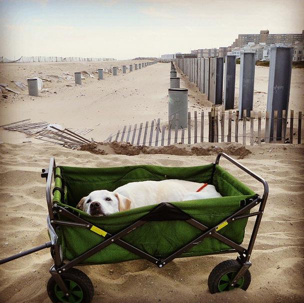 poh playa