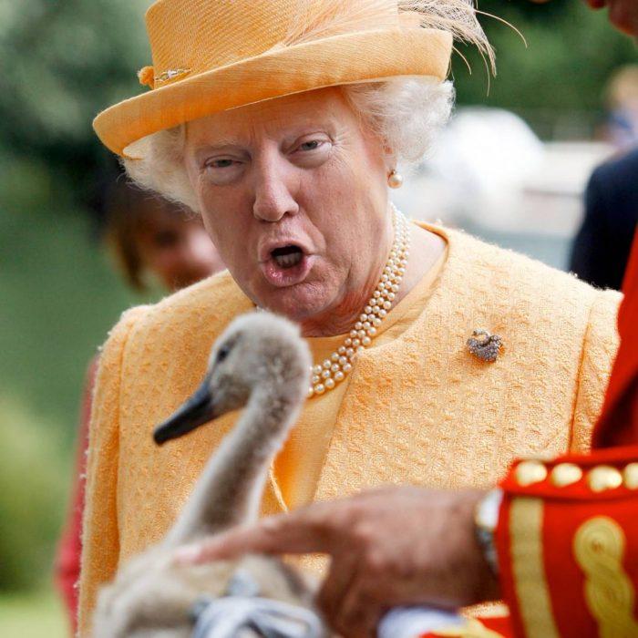 Trum y la reina Isabel viendo un pato